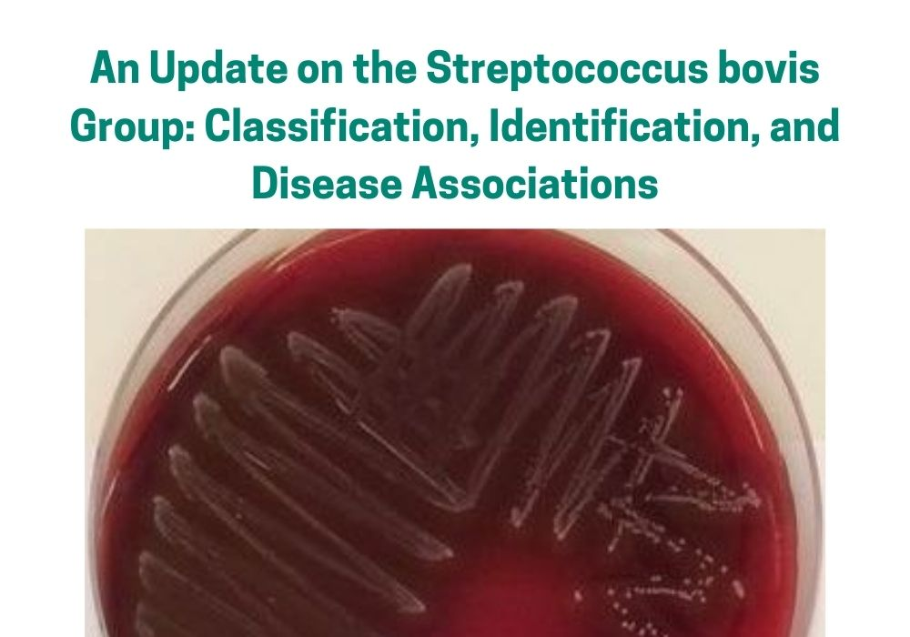 AN UPDATE ON THE STREPTOCOCCUS BOVIS GROUP: CLASSIFICATION, IDENTIFICATION, AND DISEASE ASSOCIATIONS